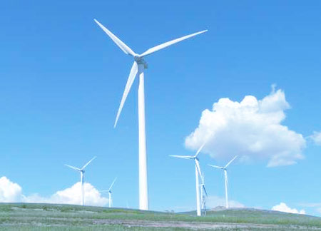 Core technology solutions for wind power bearings